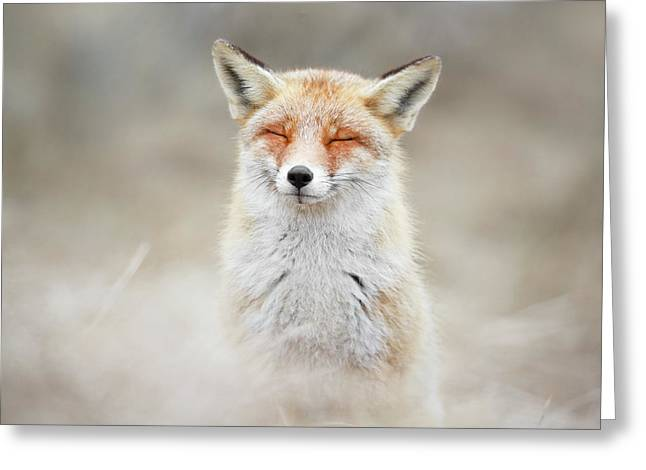 Zen Fox Series - What Does The Fox Think? Greeting Card