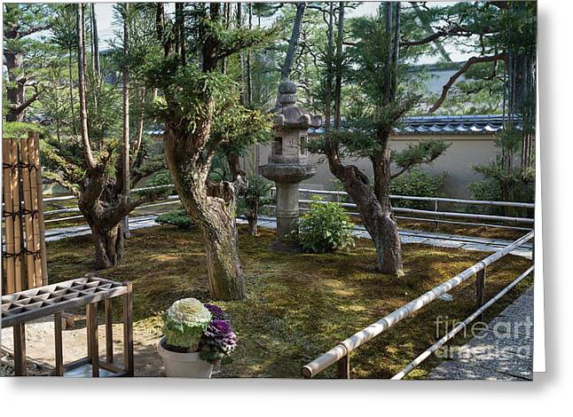 Zen Garden, Kyoto Japan 5 Greeting Card by Perry Rodriguez