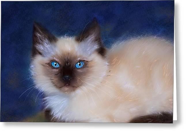 Zen Ragdoll Cat Greeting Card by Michelle Wrighton