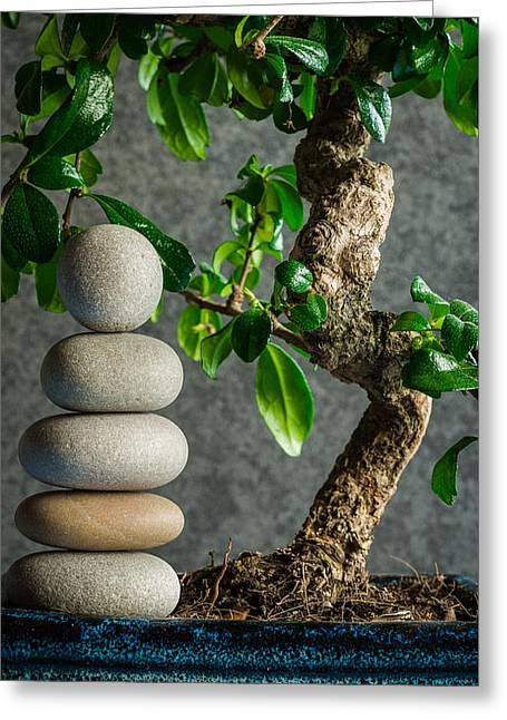 Zen Stones And Bonsai Tree II Greeting Card by Marco Oliveira