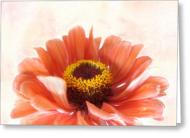 Zinnia Bright Greeting Card