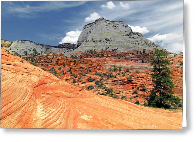 Pines Greeting Cards - Zion National Park as a storm rolls in Greeting Card by Christine Till