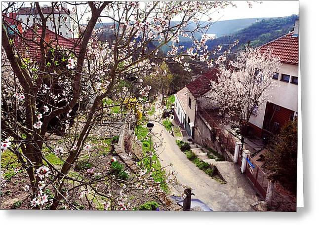 Znojmo Spring Time. Czech Republic Greeting Card by Jenny Rainbow