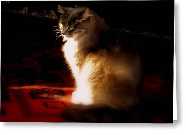 Zusje Sunbathing In The Light Greeting Card by Martin Morehead