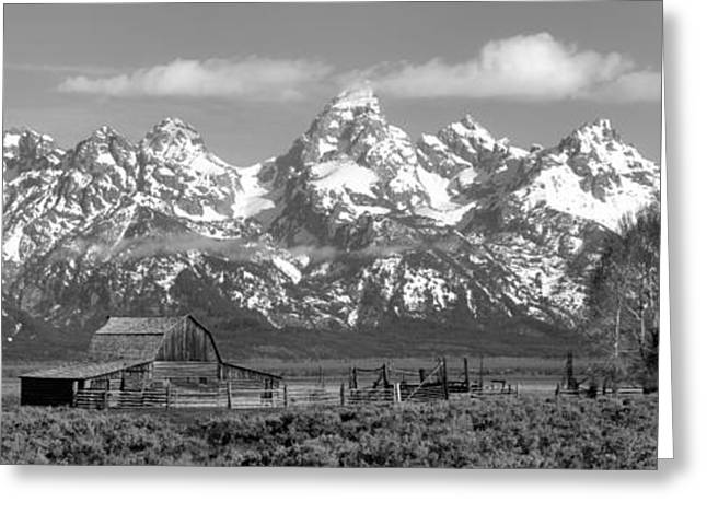 Mormon Row Moulton Barn Black And White Panorama Greeting Card by Adam Jewell