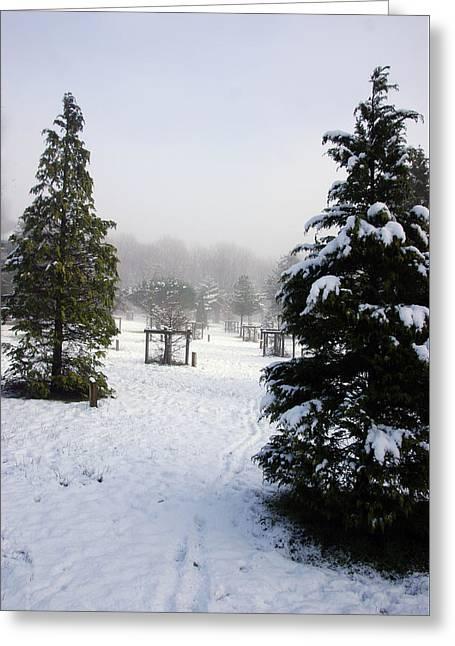 30/01/19  Rivington. Memorial Arboretum. Greeting Card