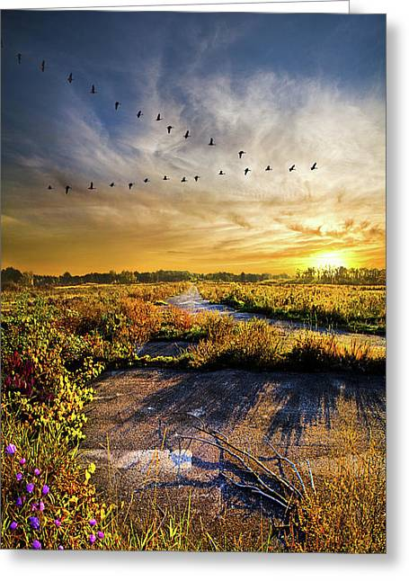 Greeting Card featuring the photograph An Old Road by Phil Koch