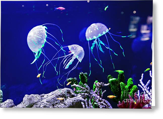 Beautiful Jellyfish, Medusa In The Neon Greeting Card