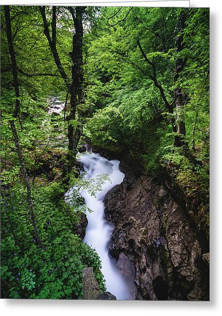 Greeting Card featuring the photograph Bela River, Balkan Mountain by Milan Ljubisavljevic