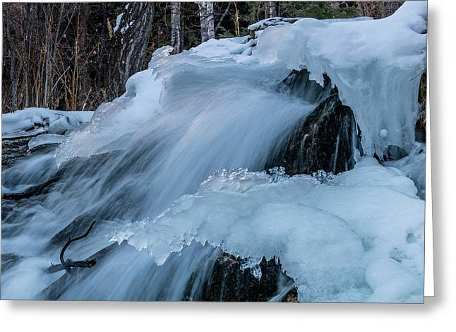 Big Hills Springs Under Snow And Ice, Big Hill Springs Provincia Greeting Card
