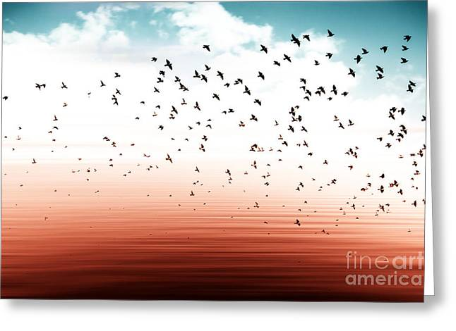 Birds Flying And Abstract Sky ,spring Greeting Card