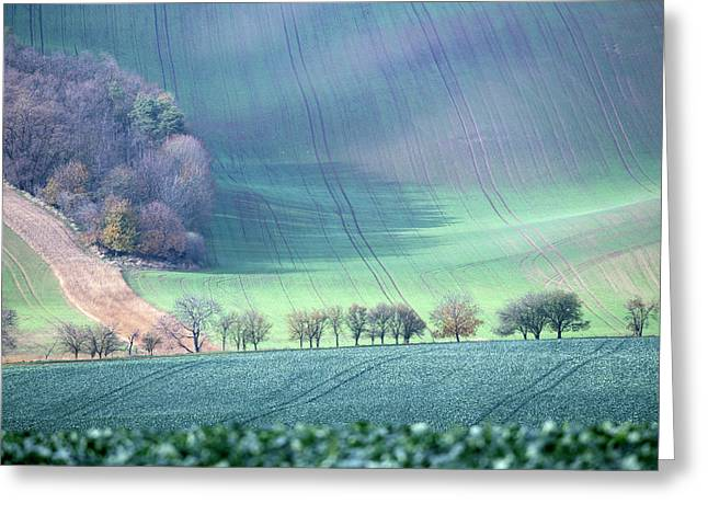 Autumn In South Moravia 1 Greeting Card