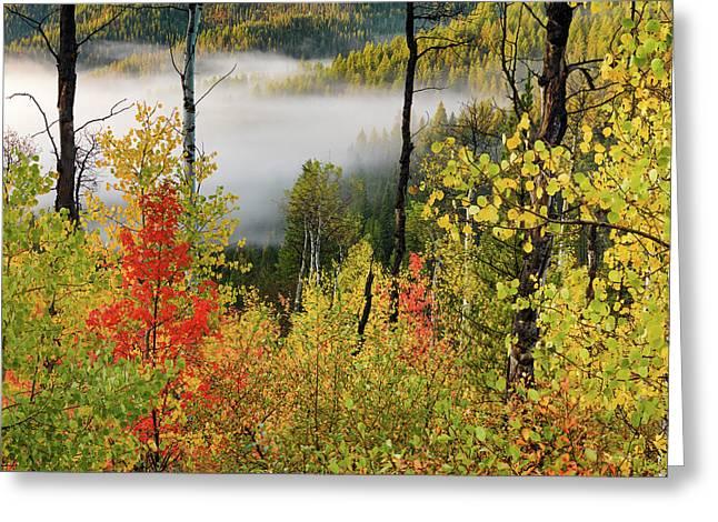 Fall Morning 2 Greeting Card by Leland D Howard