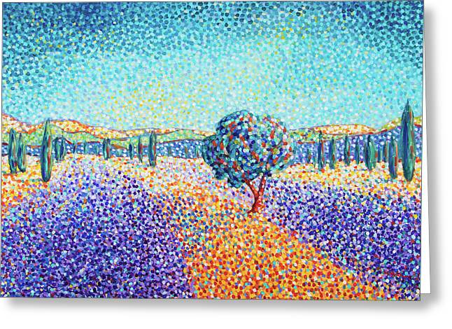 Lavender Field In Provence Greeting Card
