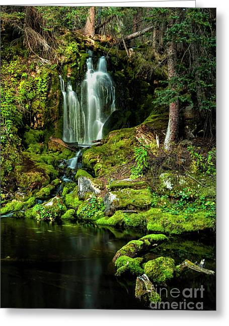 Greeting Card featuring the photograph Mossy Falls by Joe Sparks