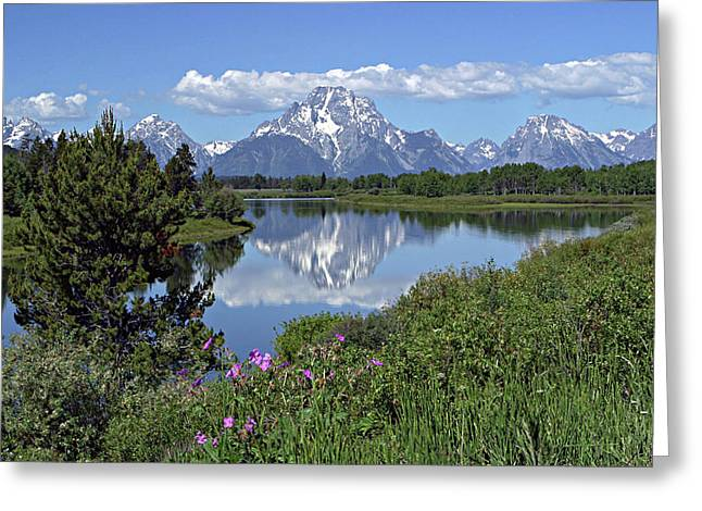 Greeting Card featuring the photograph Oxbow Bend by Ronnie and Frances Howard