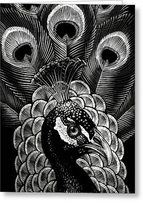 Greeting Card featuring the drawing Peacock by Clint Hansen