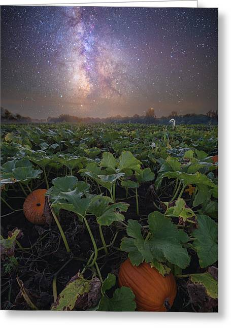 Greeting Card featuring the photograph Pumpkin Patch  by Aaron J Groen