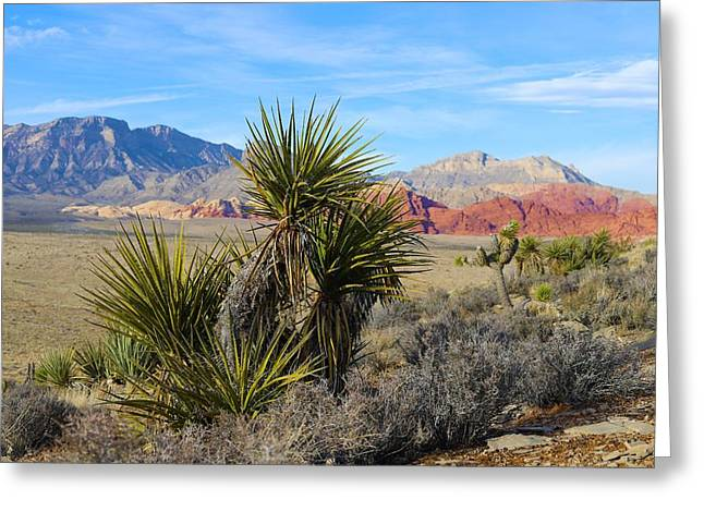 Red Rock Canyon National Conservation Area Greeting Card