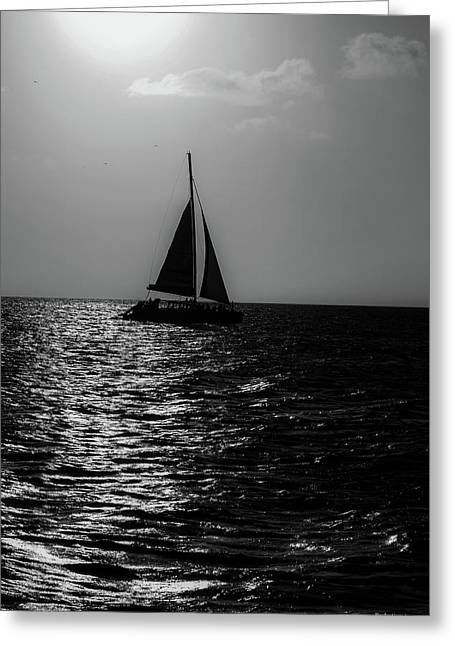 Sailing Into The Sunset Black And White Greeting Card