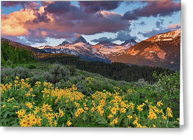 Spring Sunset In The Tetons Greeting Card by Leland D Howard