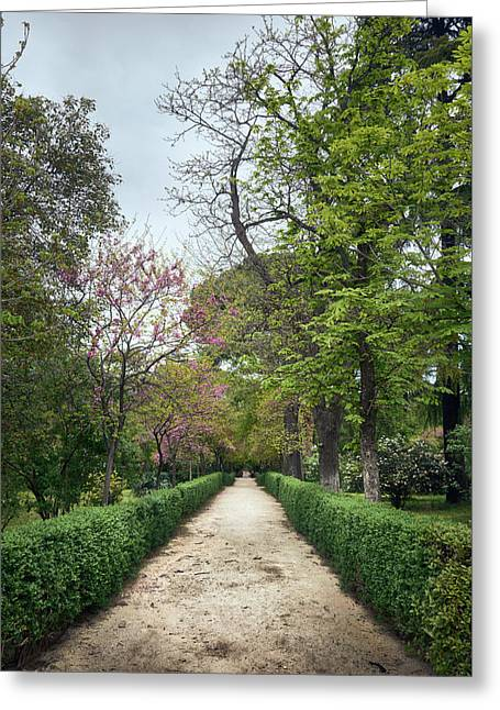 The Paths Of The Retiro Park Greeting Card