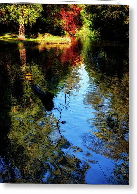 Greeting Card featuring the photograph The Pond At Inglewood House by Jeremy Lavender Photography