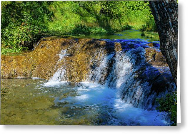The Springs In It's Summer Green, Big Hill Springs Provincial Re Greeting Card