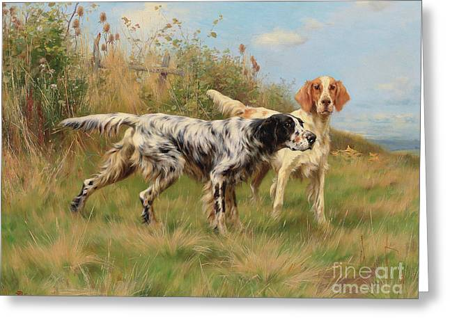Two English Setters Greeting Card