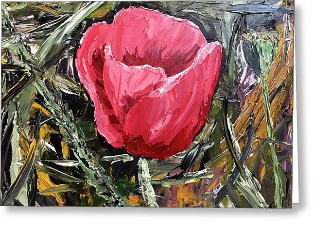 Umbrian Poppies 2 Greeting Card