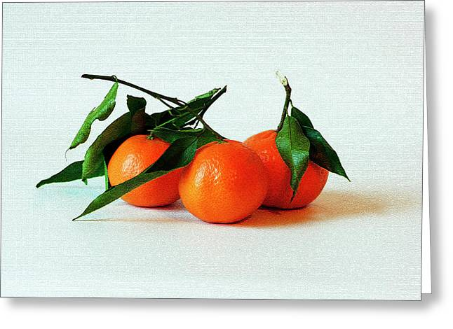 11--01-13 Studio. 3 Clementines Greeting Card