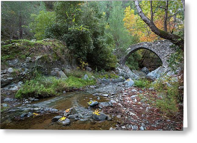Greeting Card featuring the photograph Ancient Stone Bridge Of Elia, Cyprus by Michalakis Ppalis
