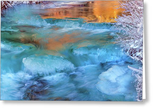 Color Of Winter Greeting Card by Leland D Howard