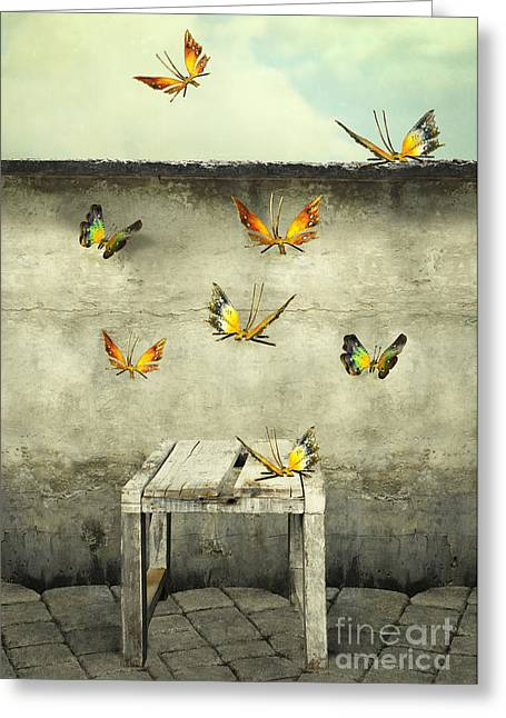 Many Colorful Butterflies Flying Into Greeting Card