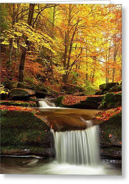 River Rapid Greeting Card