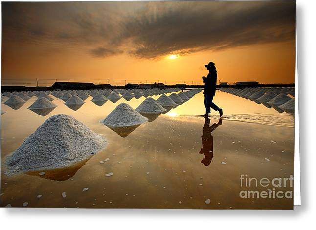 Salt Fields, Phetchaburi, Thailand Greeting Card