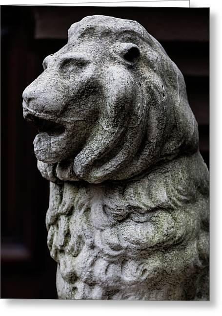Stone Lion Greeting Card by Robert Ullmann
