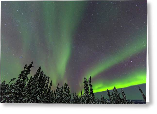 Aurora Borealis, Northern Lights Greeting Card by Stuart Westmorland