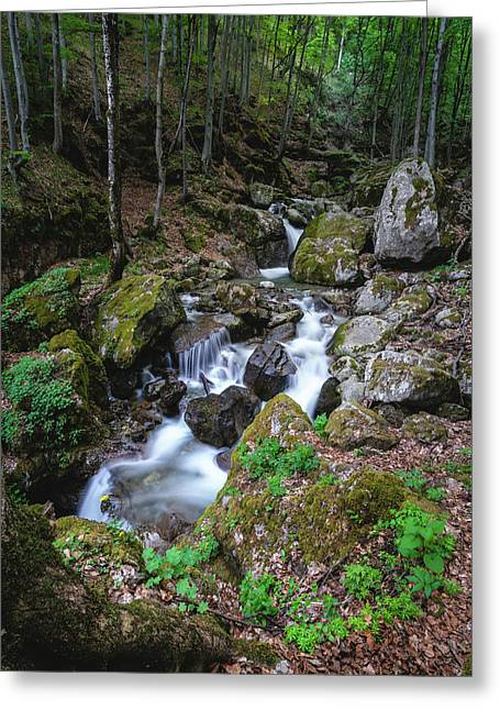 Bela River, Balkan Mountain Greeting Card