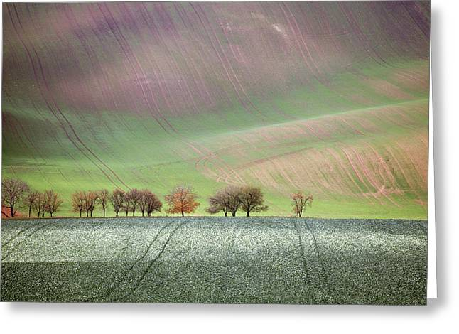 Autumn In South Moravia 3 Greeting Card