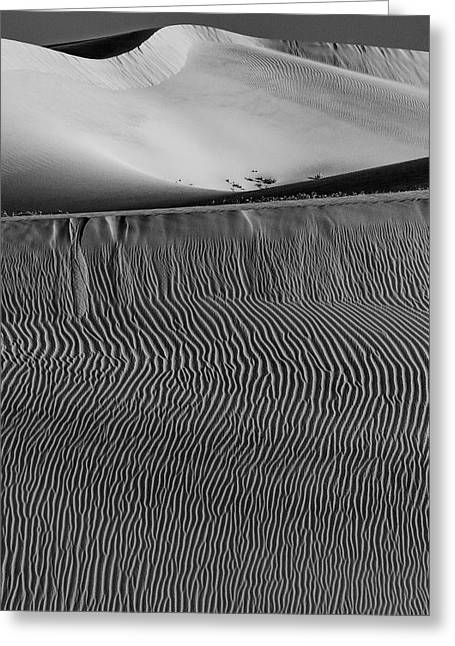 Usa, California Black And White Image Greeting Card by Judith Zimmerman