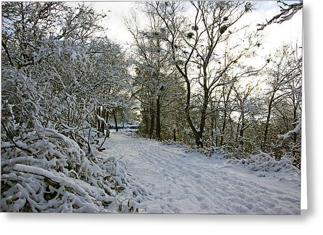 30/01/19  Rivington. Top Path Below The Pigeon Tower. Greeting Card