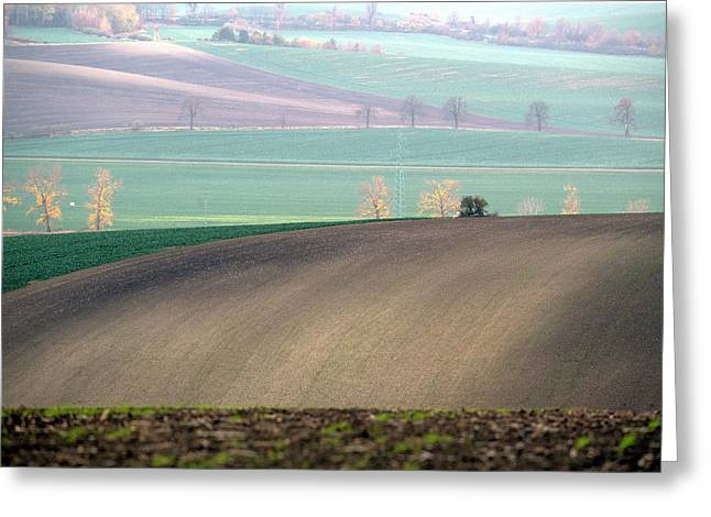 Autumn In South Moravia 5 Greeting Card