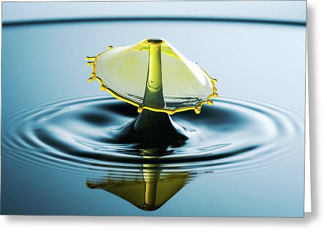 Greeting Card featuring the photograph Water Drop by Nicole Young