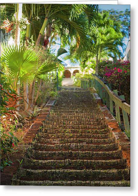 Us Virgin Islands, St Thomas Charlotte Greeting Card