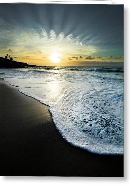 Usa, California, La Jolla Greeting Card by Jaynes Gallery