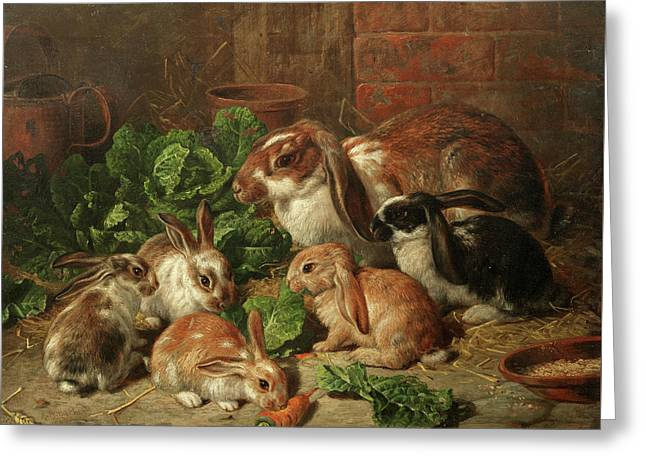 A Family Of Rabbits Greeting Card