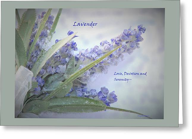 A Gift Of Lavender Greeting Card