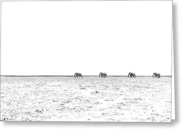 A Long Dusty Road Greeting Card