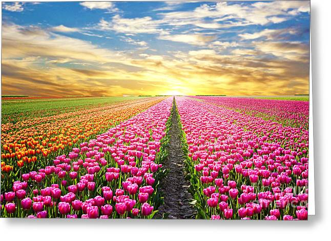 A Magical Landscape With Sunrise Over Greeting Card